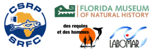 Banière-Logo_Africasaw
