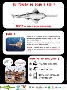 Poster Sensibilisation version Criolo