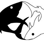 Tracking_Shark_logo