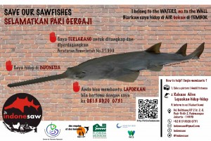 Poster-INDONESAw-Web
